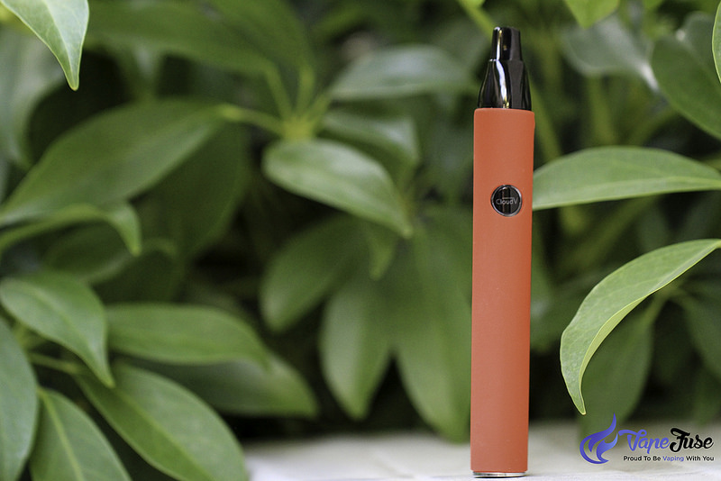 The Differences Between Vape Pens & Portable Vaporizers