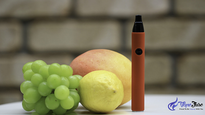 CloudV Phantom Mini – The Smallest Fully Functional Portable Herbal Vaporizer – User's Review