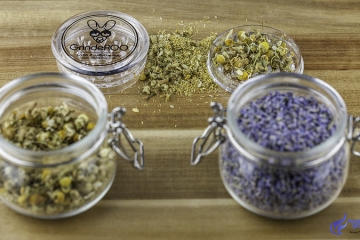7 Must Know Facts About Herb Grinders