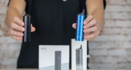 Crave Air vs PAX 3: Which One's for You?