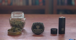 Herb Vaping 101: Best Way to Grind your Herb